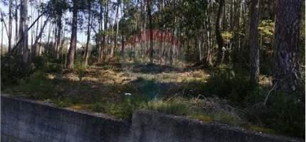 Terreno  Parceiros e Azoia